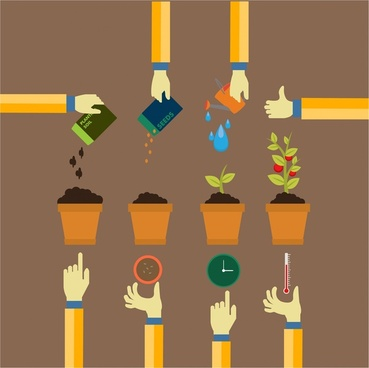 planting process concept design with infographic style