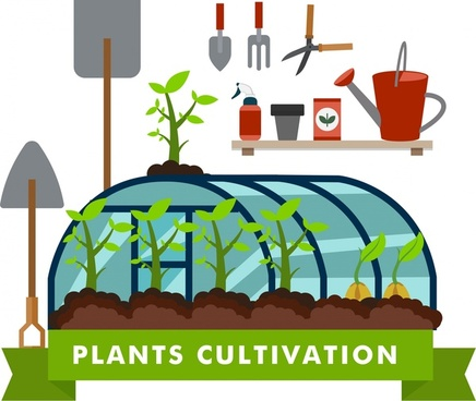 plants cultivation concept illustration with tools and glasshouse