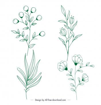 plants icons green flat handdrawn leaf flora sketch