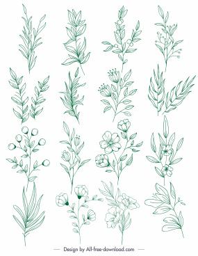 plants icons green handdrawn leaf botany sketch