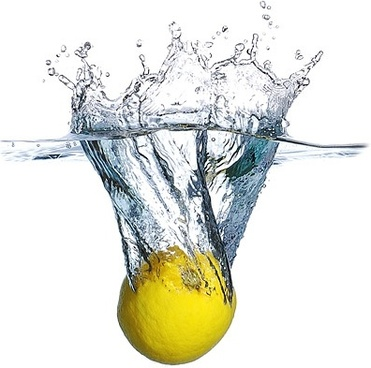 plunged into the water lemon picture