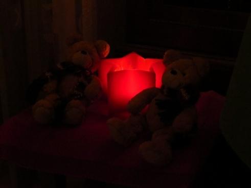 poinsettia light red