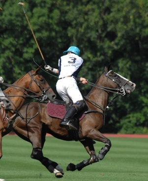 polo man player