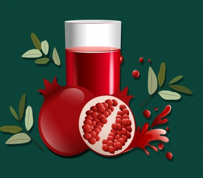pomegranate advertising red fruit glass leaf icons