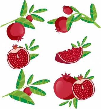 pomegranate background fruit icons various shapes isolation