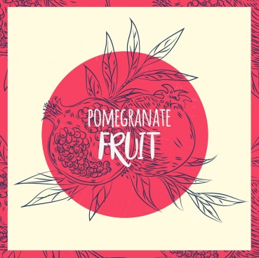 pomegranate drawing handdrawn outline retro design