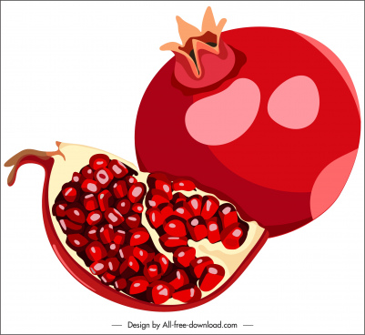 pomegranate fruit icon red classic design slice sketch