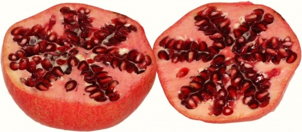pomegranate grenadine punica granatum