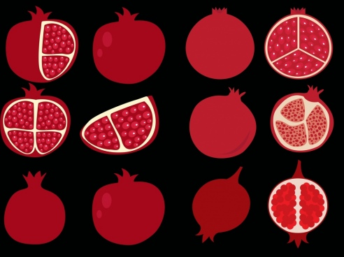 pomegranate icons collection red flat design