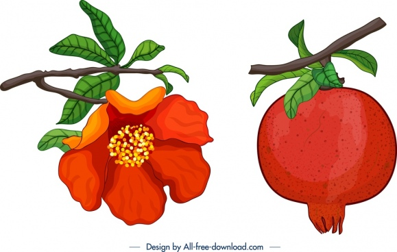 pomegranate icons fruit flower leaf branch decor