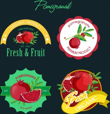 pomegranate logotypes various colored shapes isolation
