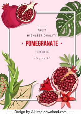 pomegranate poster template colorful classic decor