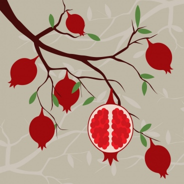 pomegranate tree background red fruits branch decoration