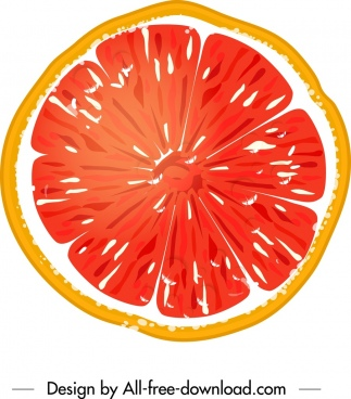 pomelo fruit icon colorful flat closeup sliced sketch