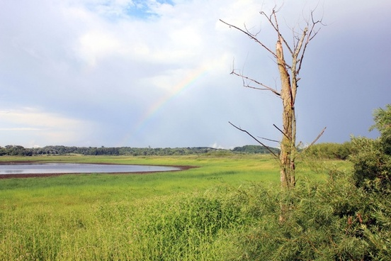 pond with rainbow in richard bong recreation area