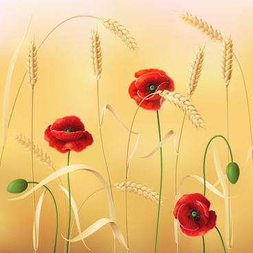 poppy with wheat design vector background