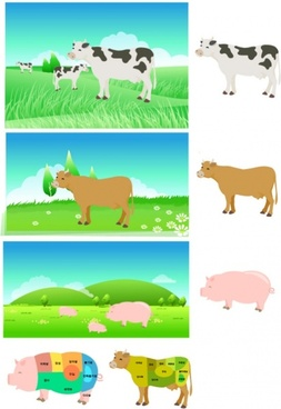pork beef parts of the decomposition map vector