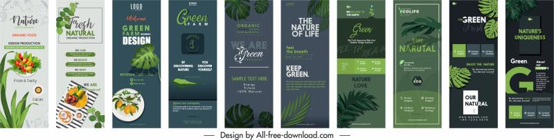 poster templates modern vertical design nature elements decor