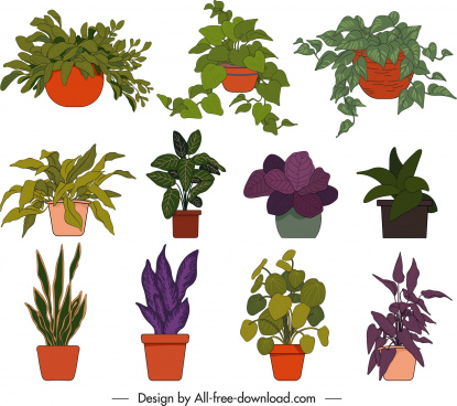 potted houseplant icons colorful flat classic handdrawn