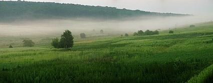 prairie picture