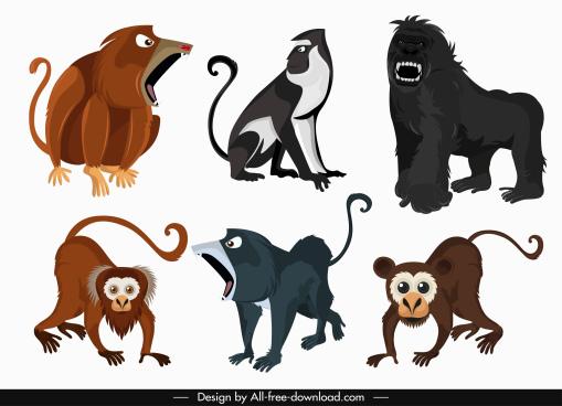 primate species icons colored cartoon sketch