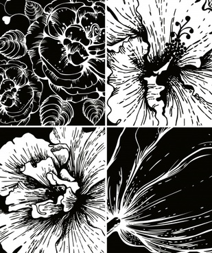 flowers background black white grunge handdrawn closeup design