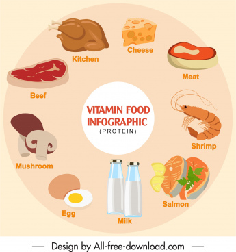 protein food infographic banner colored classic circle layout