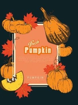 pumpkin advertisement multicolored retro design leaves decor