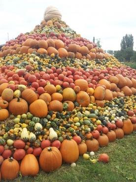 pumpkins pumpkin pumpkin pyramid