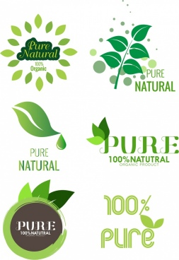 pure product logo template green leaf design