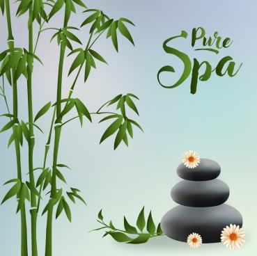 pure spa advertisement green bamboo stones icons decor