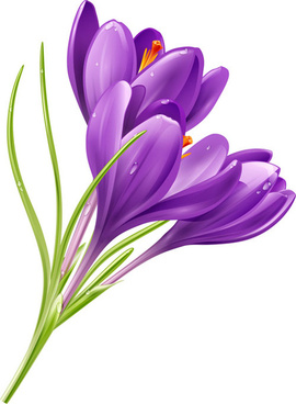 purple flower shiny vector