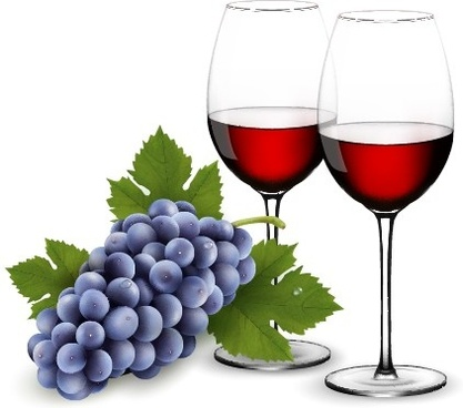 purple grape with wine design vectors