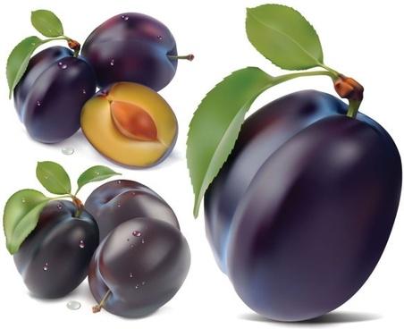 purple plum vector