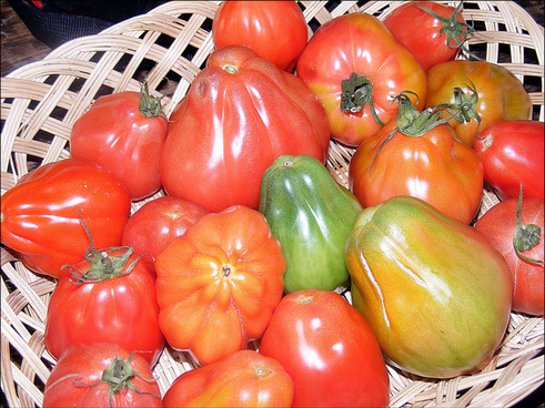 quotbeef heart quot tomatoes