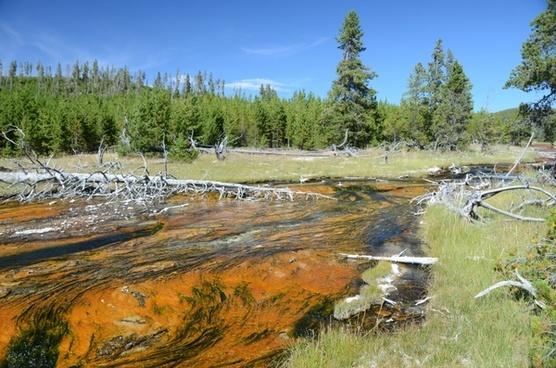 rabbit creek yellowstone national park wyoming
