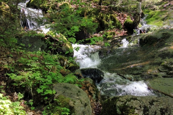 raging brook in the adirondack mountains new york