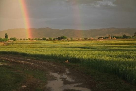 rainbow field afghanistan