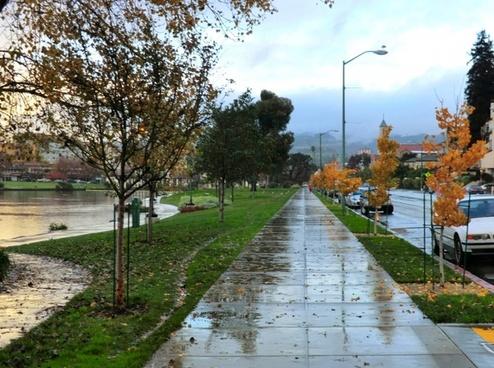 rainy sidewalk 6049