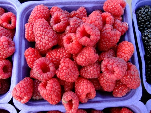raspberries fruit market