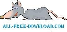 Rat Walking 2
