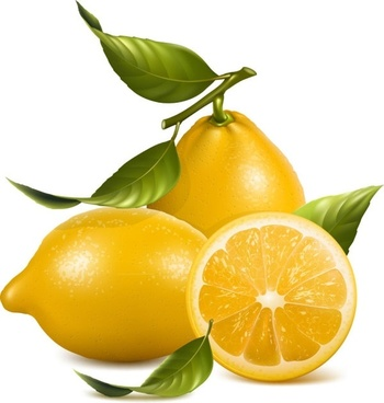 fresh lemon icons design yellow realistic design