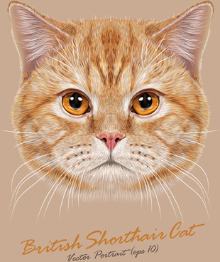 realistic cat art background vector