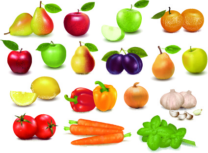 realistic fruit vector illustration set