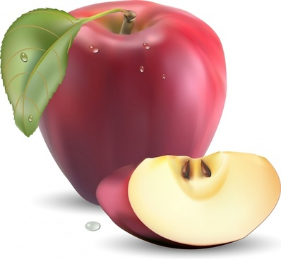 fresh apple icon colored realistic 3d sketch