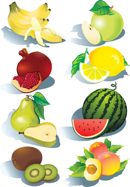 realistic fruits icons vector