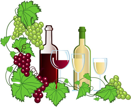 realistic grapes and wine design vector