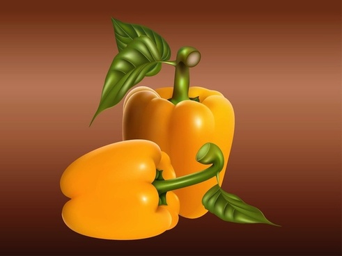 realistic peppers food vectors