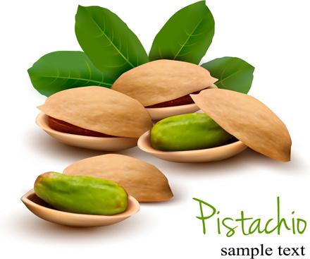 realistic pistachio shiny vector background