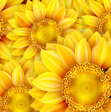 realistic sunflowers vector seamless pattern